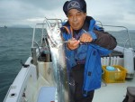良型タチウオがクーラー満タン、久々に特大サイズ釣れました