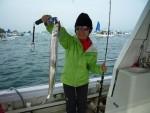 タチウオ狙いで出船、コペル二クスでよく釣れました
